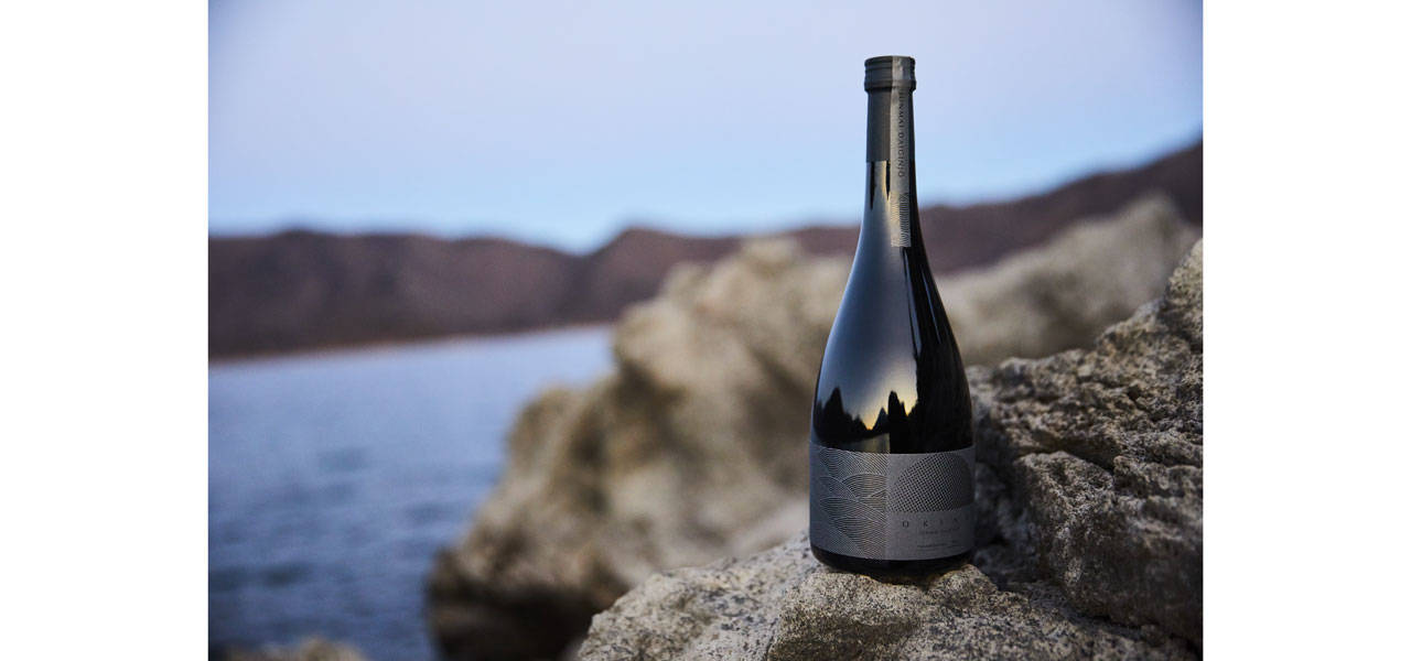 人生の重要なワンシーンに彩り添える理想の酒「OKINA」|EAT