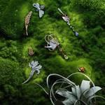 自然界の美しさを称える新作ジュエリーコレクション|CHAUMET