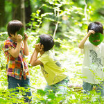 星野リゾート リゾナーレ「テレワークステイプラン」|Hoshino Resorts RISONARE
