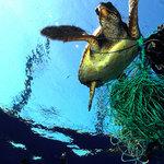 ブライトリングが取り組むSDGsのキーワードは「海の健康を守り、人生を豊かにすること」|BREITLING