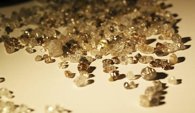 ダイヤモンドの原石も展示され、多くの人々の目を惹きつけた。