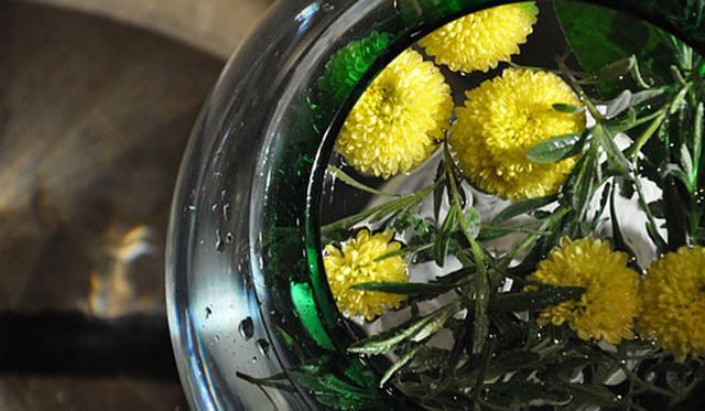 塚田有一│みどりの触知学 上弦の月にむかって活けた菊