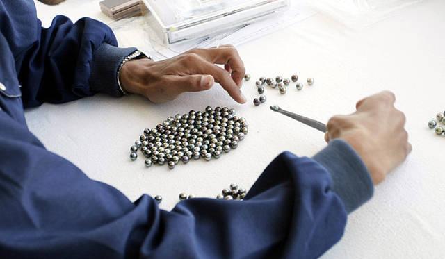 三原康裕的日本モノづくり|祐真さんの感性に響いた黒蝶真珠。ピーコック色が佳麗。