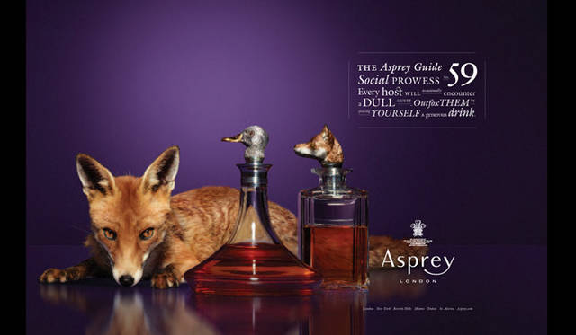 <strong>Asprey|アスプレイ</strong> アスプレイイメージビジュアルより。
