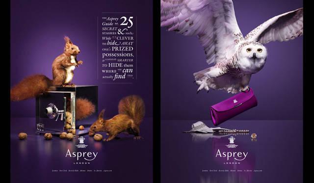 <strong>Asprey|アスプレイ</strong> アスプレイ イメージビジュアルより。