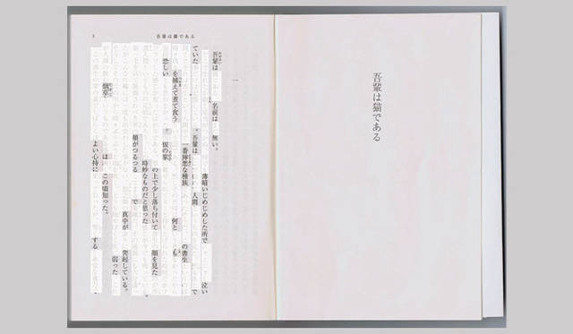 <strong>特集|OPENERS的ニッポンの若手建築家 PARTII 長坂 常</strong> Sayama Flat Concept drawing(2008年)