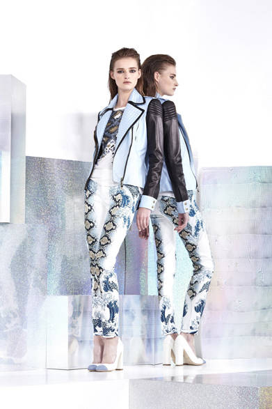 <strong>JUST CAVALLI
