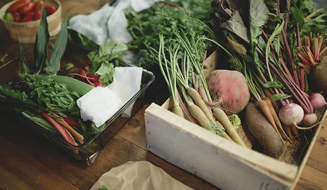 「須永農園」から届いた野菜