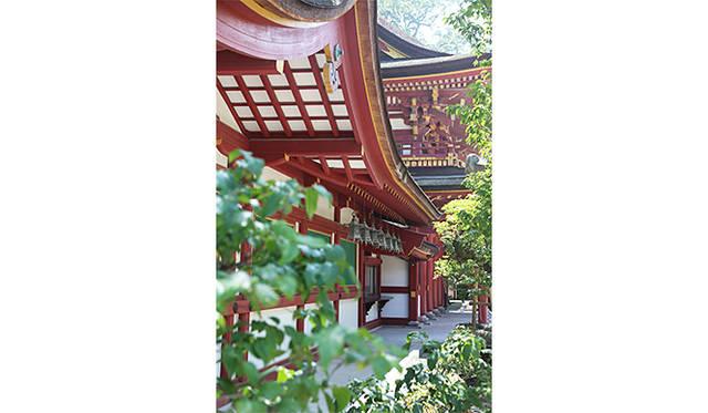 太宰府天満宮で重ねられてきた1100年の歴史と、あたらしいフラワーアートに宿る革新性が融合する