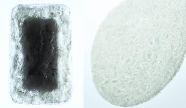 <strong>AGAR PLASTICITY – A POTENTIAL USEFULNESS OF AGAR FOR PACKAGING AND MORE</strong><br /> 寒天からつくられた梱包資材。使用後も土壌の保水力を向上させる効果や、海に流れた場合も天然素材のため海洋生物を害さないなど、環境保全に考慮した新しい資材。