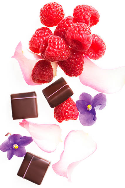Des fleurs juste pour le plaisir<br>   フルール プレズィール<br> ー お花を、ただ楽しむためにー