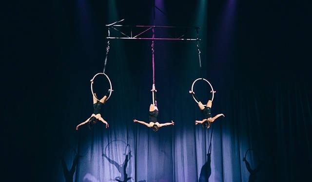 観客の頭上で、アクロバットダンスも披露された