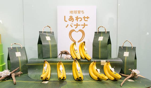 <strong>unifrutti|ユニフルーティー</strong><br />「地球育ち しあわせバナナ&reg;」<br />バナナは、赤道を中心に北緯30度から南緯30度の、年間を通して高温多湿な熱帯地域で栽培されている。