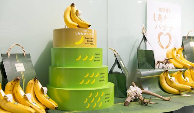 <strong>unifrutti|ユニフルーティー</strong><br />「地球育ち しあわせバナナ&reg;」<br />日中に熱帯の強い日差しによる光合成で生成された栄養分は、気温が下がる夜間に、果実へデンプン質として蓄積されつづけ、果肉に水分が少ない、ぎっしりとデンプン質が蓄積された高品質のバナナが育つ。