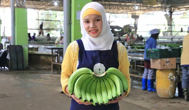 <strong>unifrutti|ユニフルーティー</strong><br />「地球育ち しあわせバナナ&reg;」<br />「地球育ち しあわせバナナ&reg;」は、知識と経験豊かな熟練のバナナ追熟加工職人により、豊富に蓄積されたデンプン質を上手に糖化。追熟加工期間は通常5日間だが、「地球育ち しあわせバナナ&reg;」は芯までしっかりと糖化させるために7日間をかける。この追熟加工により香り高いアロマも引き出す。