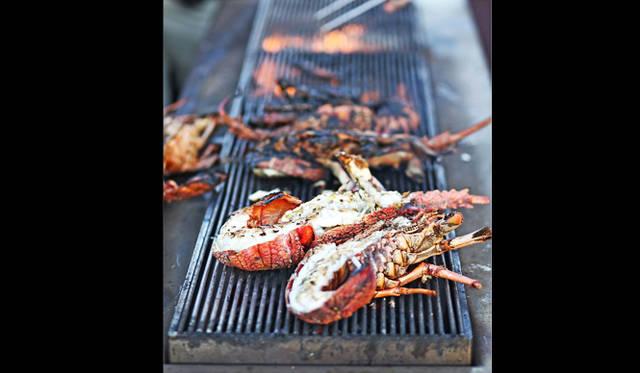 <br />ハイライトのディナーの前菜は海上のポンツーンで。豪快なロックロブスターのグリル
