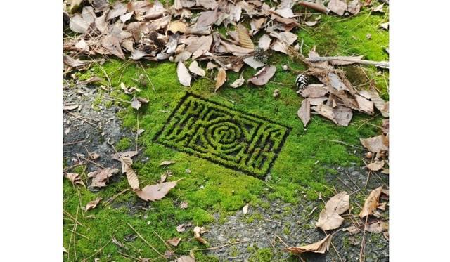 『庭園迷路』2009 タイプCプリント 26×34cm