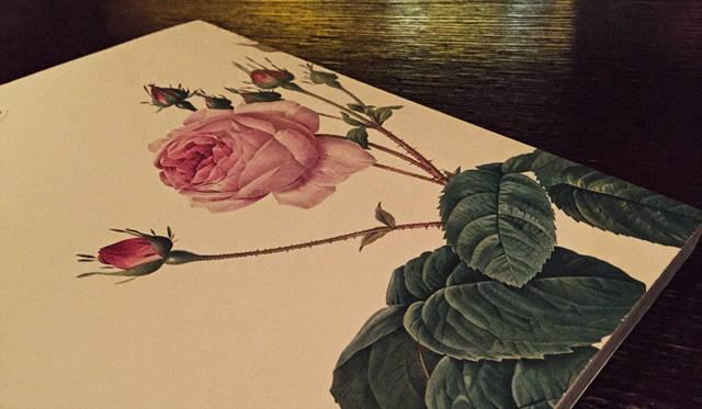 この本は2008年のルドゥーテ生誕250年記念の展覧会『薔薇空間』で購入したカタログの裏表紙。繊細なリアリティと幻想のあいだで揺れる官能的なタッチが個性的。刺の先までうつくしく魅せる技法がたまりません。2015年6月19日まで、日比谷図書文化館でルドゥーテの展覧会が開催されています。チェンバロの演奏会もおこなわれれているので、気になる方はぜひ足を運んでみては。