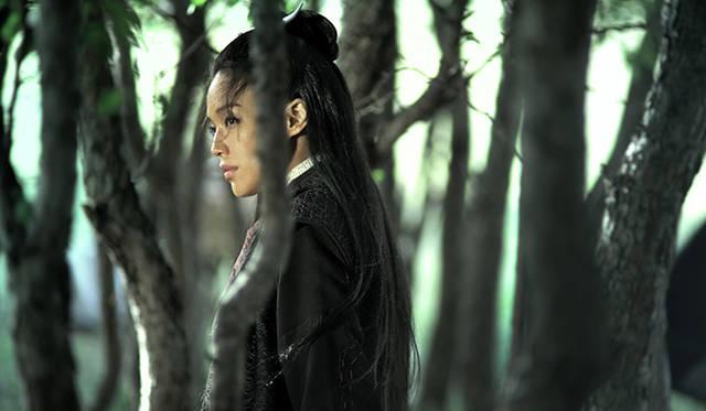 長編部門 監督賞:『黒衣の刺客』 <br>© SpotFilms