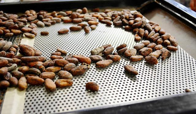 世界各地の産地から運ばれてきたカカオ。筆者のおすすめはエクアドル産カカオ72%。ハチミツのような甘さのなかに、ほのかなシナモンのフレーバーが