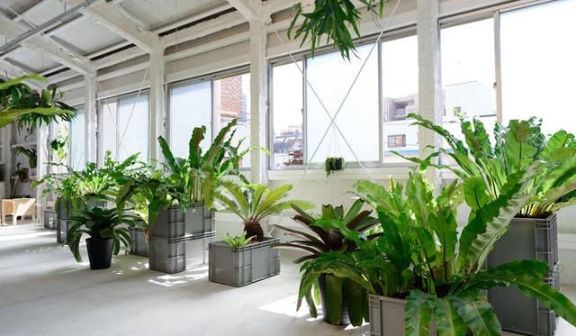 「高橋理子押上スタジオ」3階(野菜栽培をおこなう菜園とアトリエの個室スペースがある)