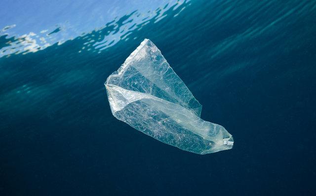 ブライトリング 国際海岸クリーンアップキャンペーン