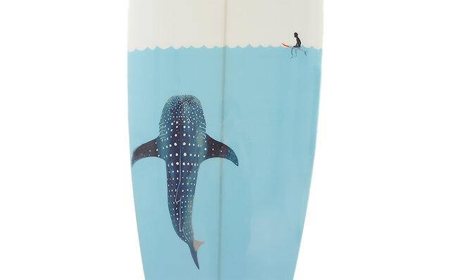 Whale Shark SAN DIEGO FISH