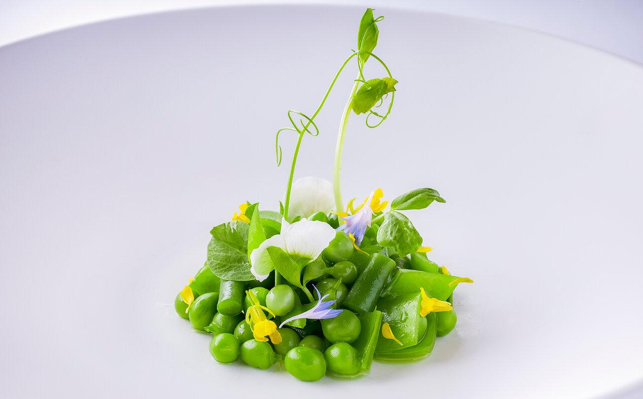 前菜 サラダヴェール