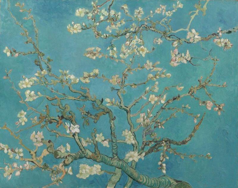 アーモンドの花咲く枝