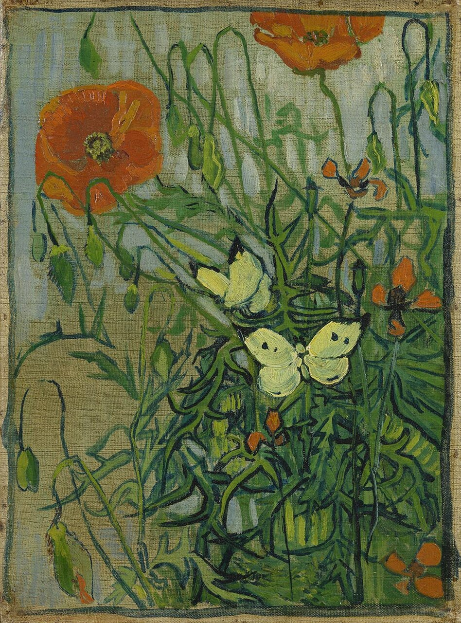 ひなげしと蝶(Butterflies and Poppies ;Saint-Remy-de-Provence, May-June 1889)