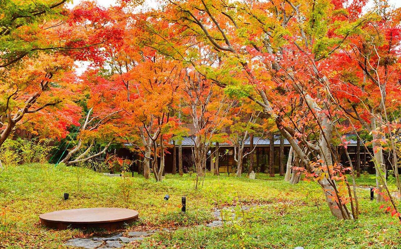 界 鬼怒川 中庭