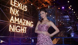 s_25_lexus_nx_amazing_night