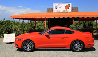 Ford Mustang GT|フォード マスタング GT