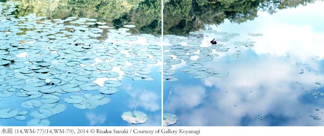 INTERVIEW|特別対談 鈴木理策 × 加瀬亮「写真を見ることの喜び」