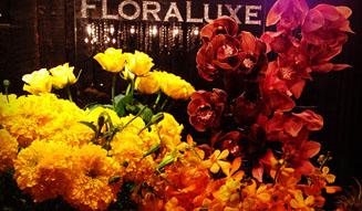 FLORALUXE|ハロウィン