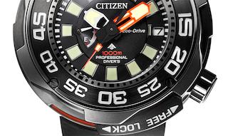 s_012_citizen_tup