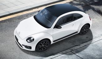 Volkswagen The Beetle Black Style|フォルクスワーゲン ザ ビートル ブラックスタイル 011