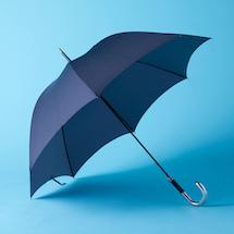s_s_003_best7_16_foxumbrellas