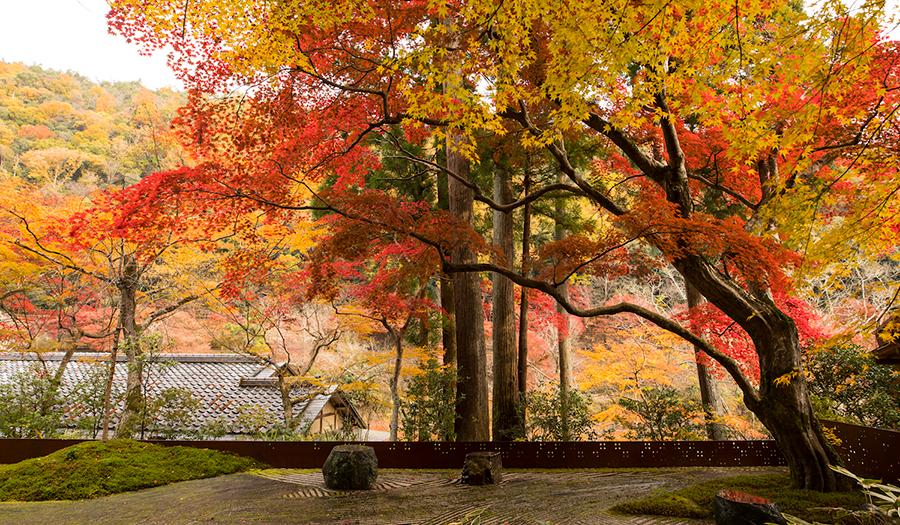 6_HOSHINOYA-Kyoto_OPENERS