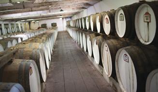 Seppeltsfield Wines, SA