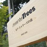雄大な自然が育むmore treesの森