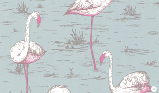 Flamingos_blue327_g