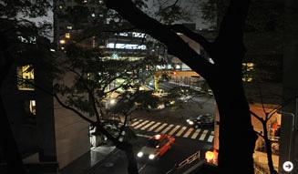 温室|月夜の読書会 03