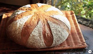 パン屋|ティグレ 02