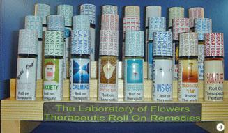 マイケル・スコール|Aromatic Recovery workshop 03