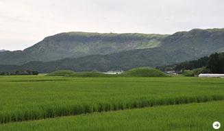 温室|九州の旅 07