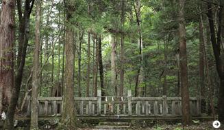 森の神に会う旅 07