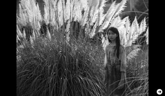 ART|立木義浩写真展 『小女』03