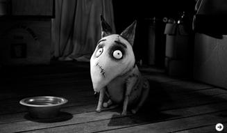 『フランケンウィニー』 愛犬スパーキー