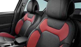 Citroen DS4 Edition Rouge|シトロエンDS4 エディション ルージュ